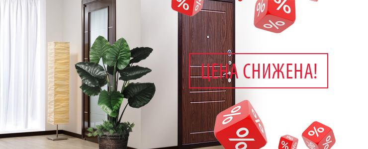 Дверь Zetta NEO-1